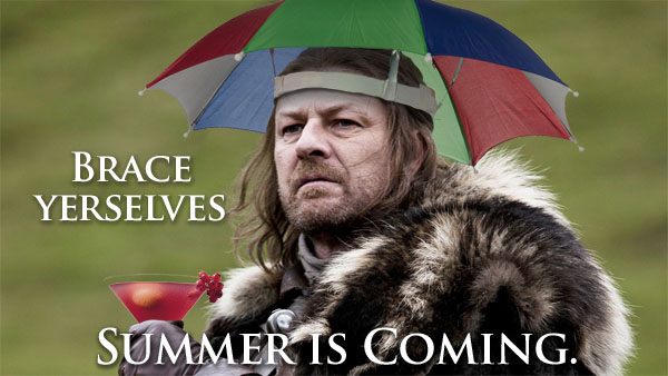 Brace Yourselves Summer Coming June Meme