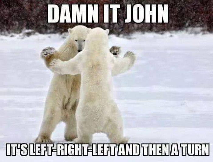 Damn It John It's Left Polar Bear Meme