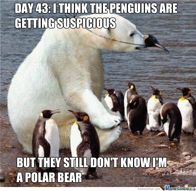 Day 43 I Think The Polar Bear Meme
