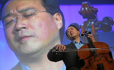 Funny Violin Meme
