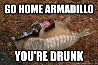 Go Home Armadillo You're Drunk Armadillo Meme