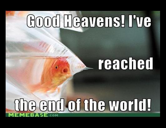 Good Heavens I've End Of The World Meme