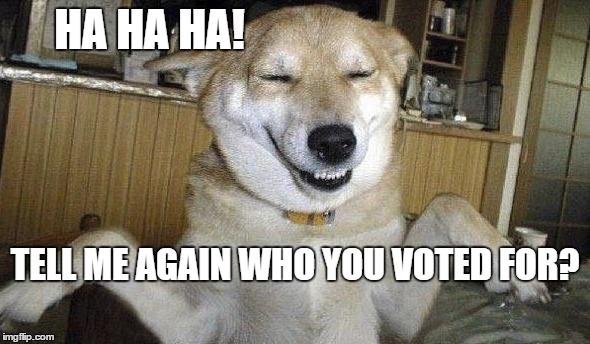 Ha Ha Ha! Dog Laughing Meme