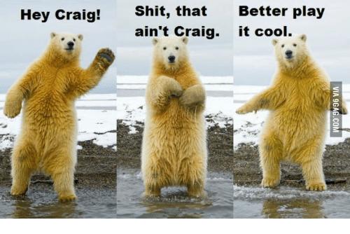 Hey Craig! Shit, That Ain't Craig Polar Bear Meme