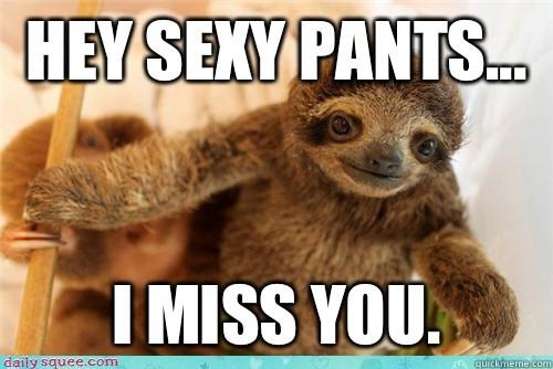 Hey Sexy Pants I Love Meme