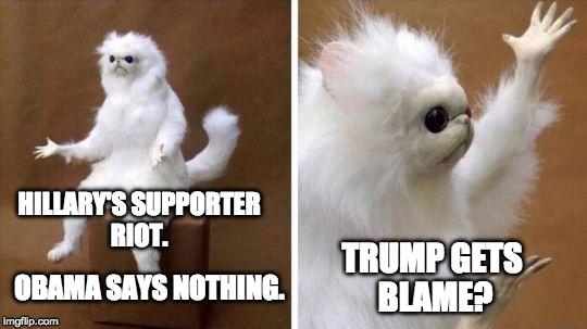 Hillary's Supporter Riot Cat Meme