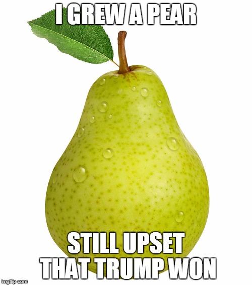 I Grew Pear Still Upset That Trump Won Pear Meme