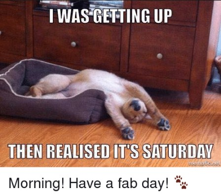 I Was Getting Up Then Saturday Meme