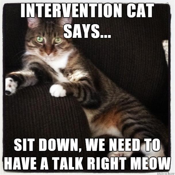 Intervention Cat Says Intervention Meme