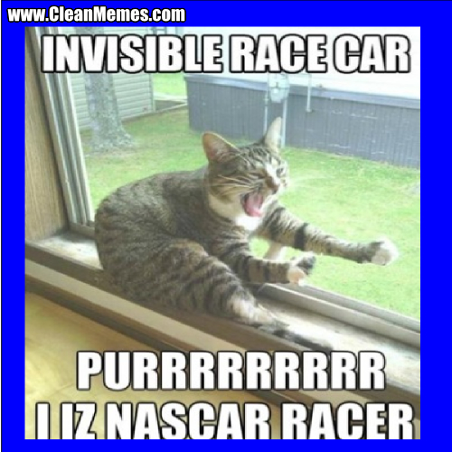 Invisible Race Car Funny Cat Memes Clean
