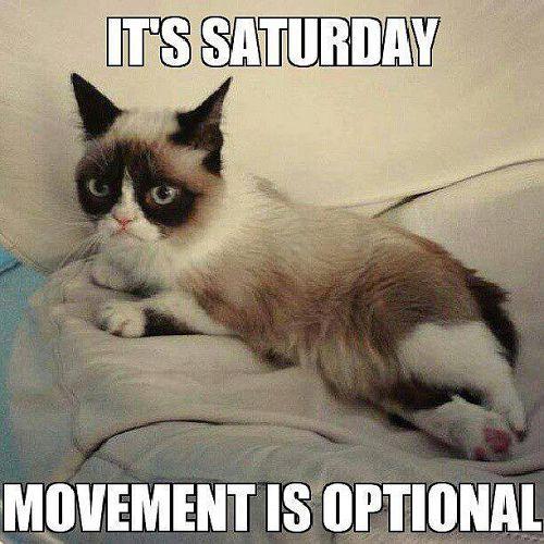 It's Saturday Movement Is Optional Saturday Meme