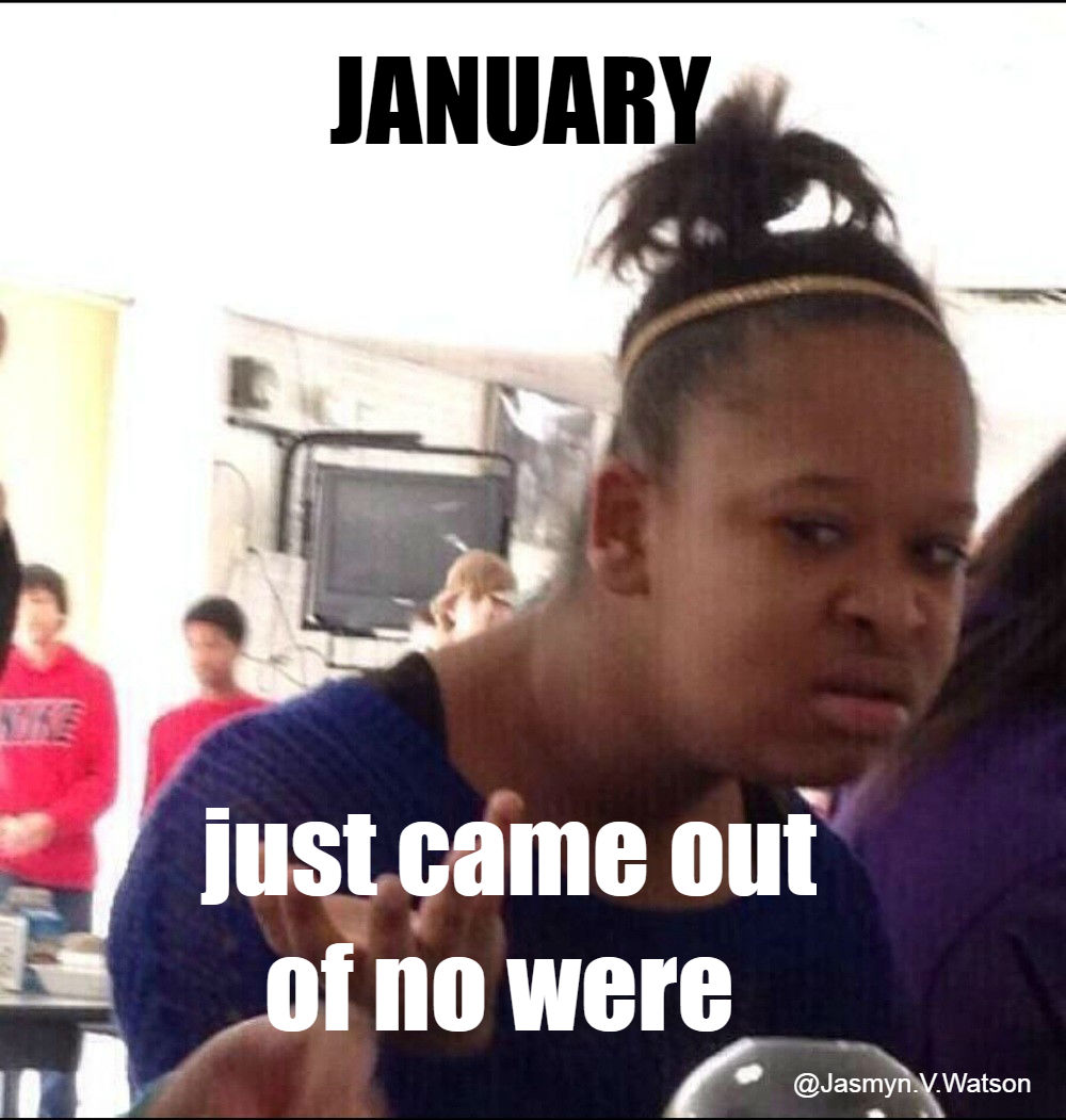 January Just Came Out January Meme