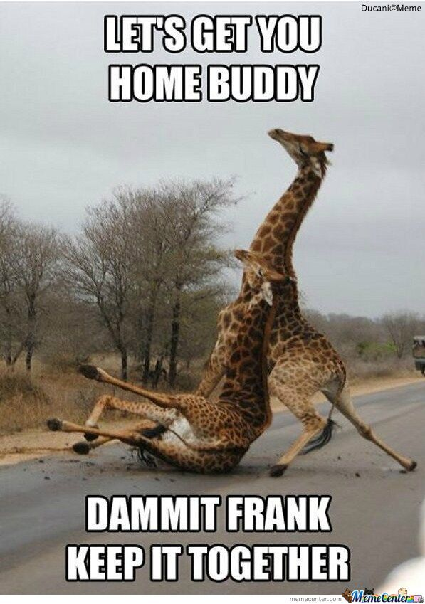 Let's Get You Home Saturday Meme