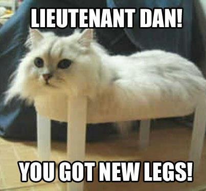 Lieutenant Dan! You Got Cat Meme