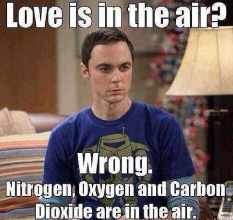 Love Is In Being Single Meme