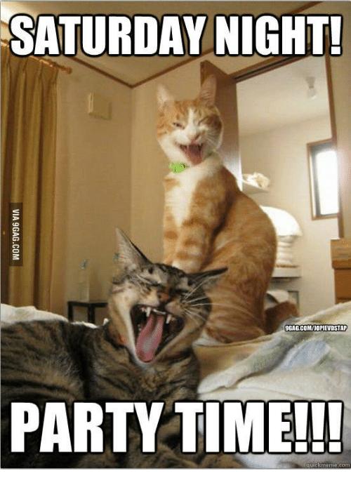 Saturday Night Party Time Saturday Meme