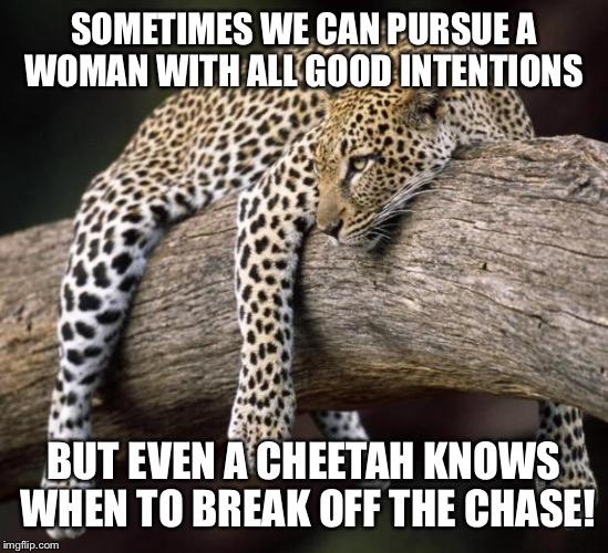 Sometimes We Can Pursue A Woman Cheetah Meme