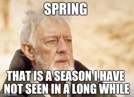 Spring That Is A March Meme