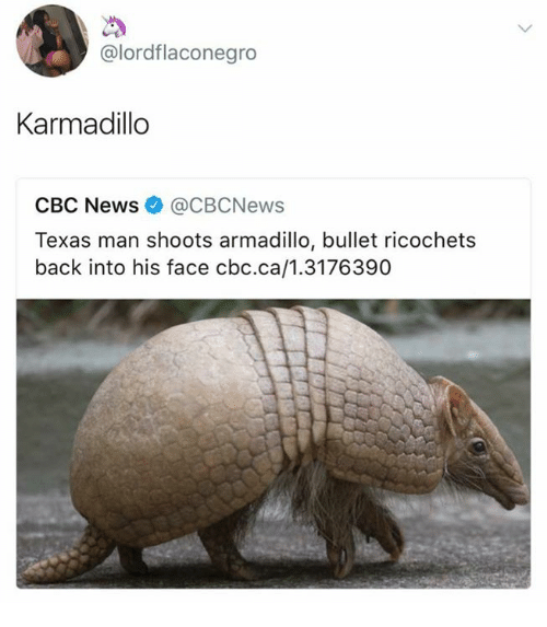 Texas Man Shoots Armadillo Meme
