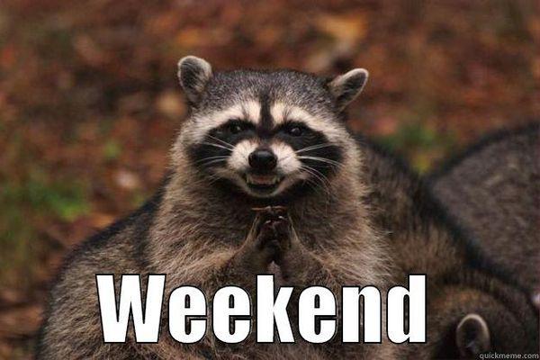 Weekend Saturday Meme
