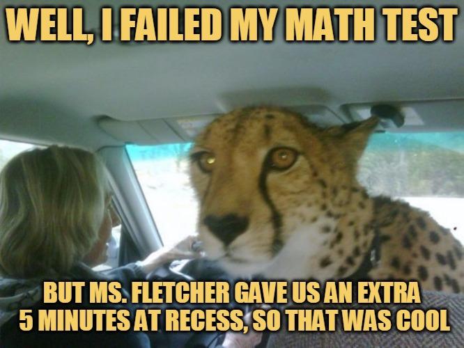 Well, I Failed My Math Test Cheetah Meme