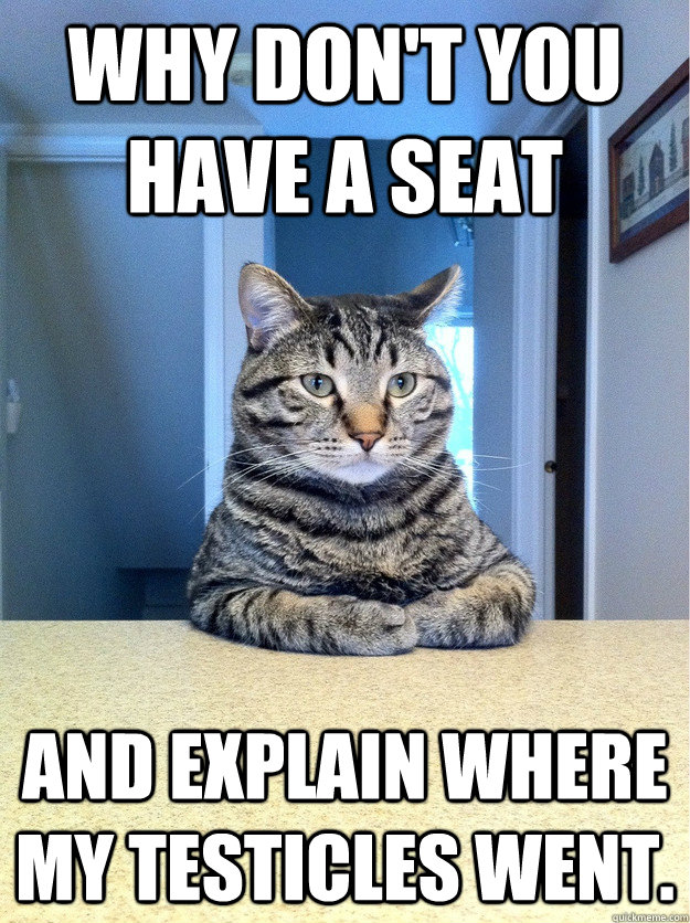 Why Don't You Have A Seat Cat Meme