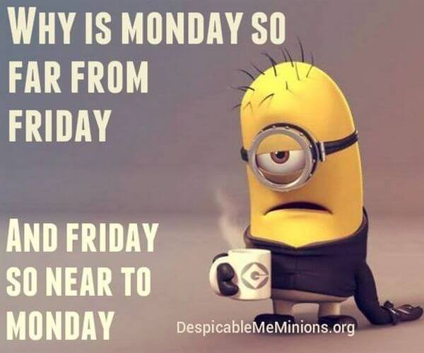 Why Is Monday So Monday Meme