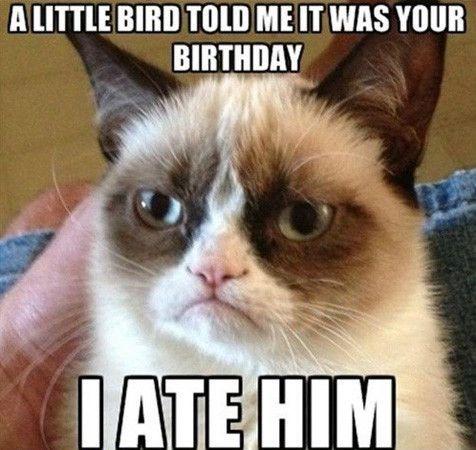 A Little Bird Told Aunt Birthday Meme