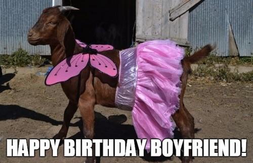 Boyfriend Birthday Meme 09