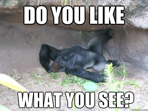 Do You Like What Gorilla Meme