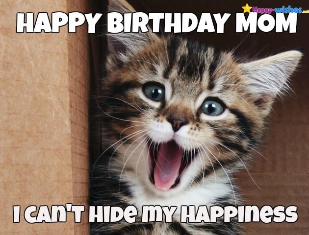 Happy Birthday Mom I Mom Birthday Meme