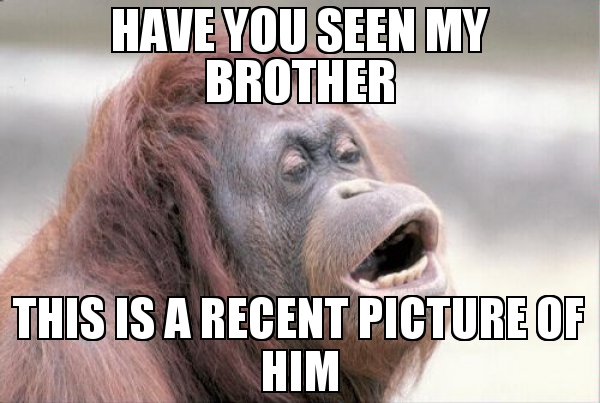 Have You Seen My Brother Meme