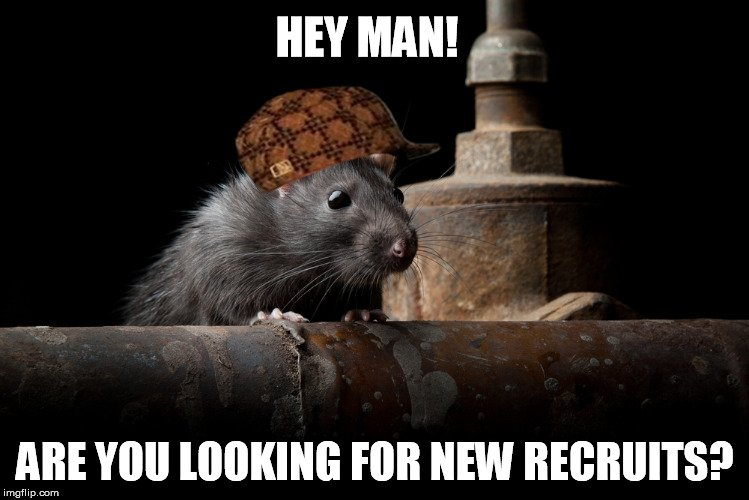 Hey Man! Are You Rats Meme