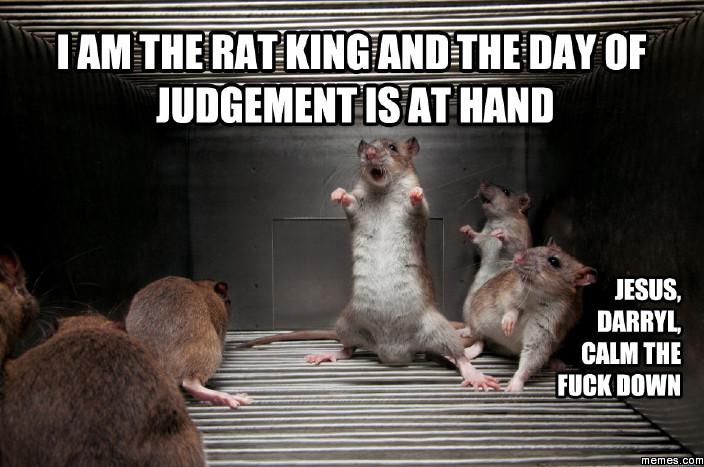 I Am The Rat Rats Meme