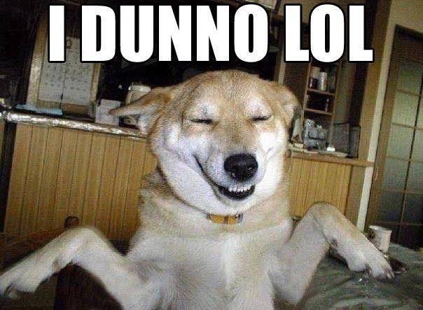 I Dunno Lol Dogs Meme