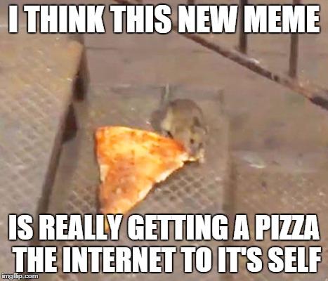 I Think This New Rat Meme