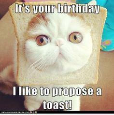It's Your Birthday I Kid Birthday Meme