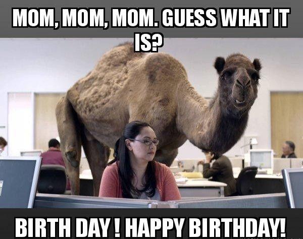 Mom Mom Mom Guess Mom Birthday Meme