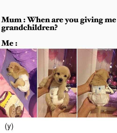 Mum When Are You Grandchild Meme