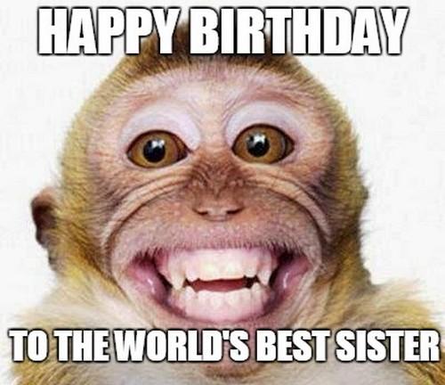 Sister Birthday Meme 40