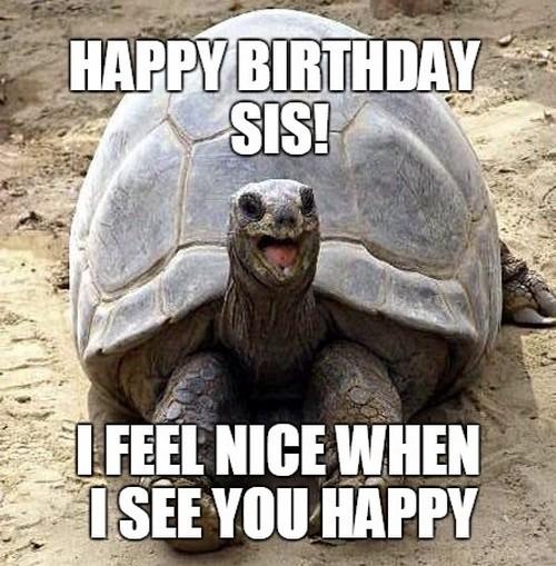 Sister Birthday Meme 41