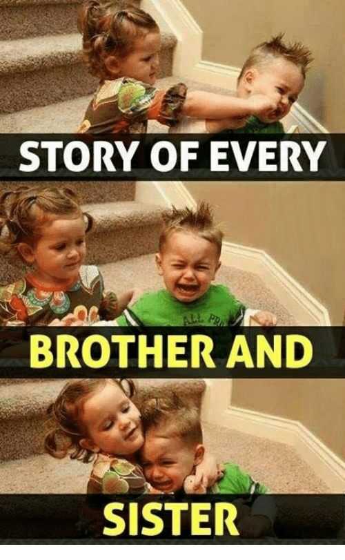 Story Of Every Brother Brother Meme