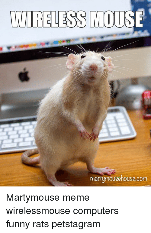 Wireless Mouse Martymouse Rats Meme