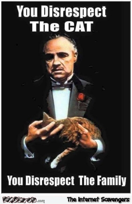 Your Disrespect The Cat Godfather Meme