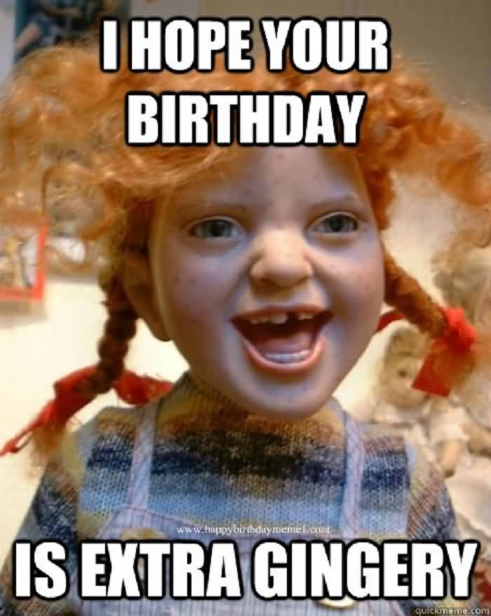 i hope your birthday is extra gingery funny memes