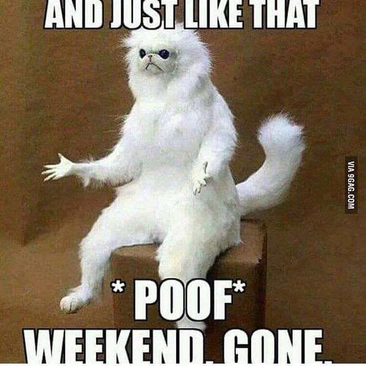 And Just Like That Poof Weekend Gone 3 Day Weekend Meme