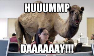 HUUUMMP DAAAAAAY!!! Hump Day Meme