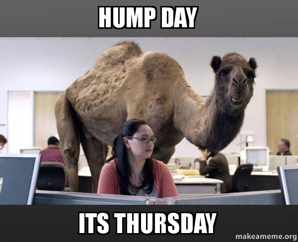 Hump Day Its Thursday Hump Day Meme