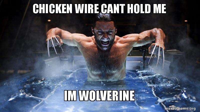 Chicken Wire Cant Hold Wolverine Meme
