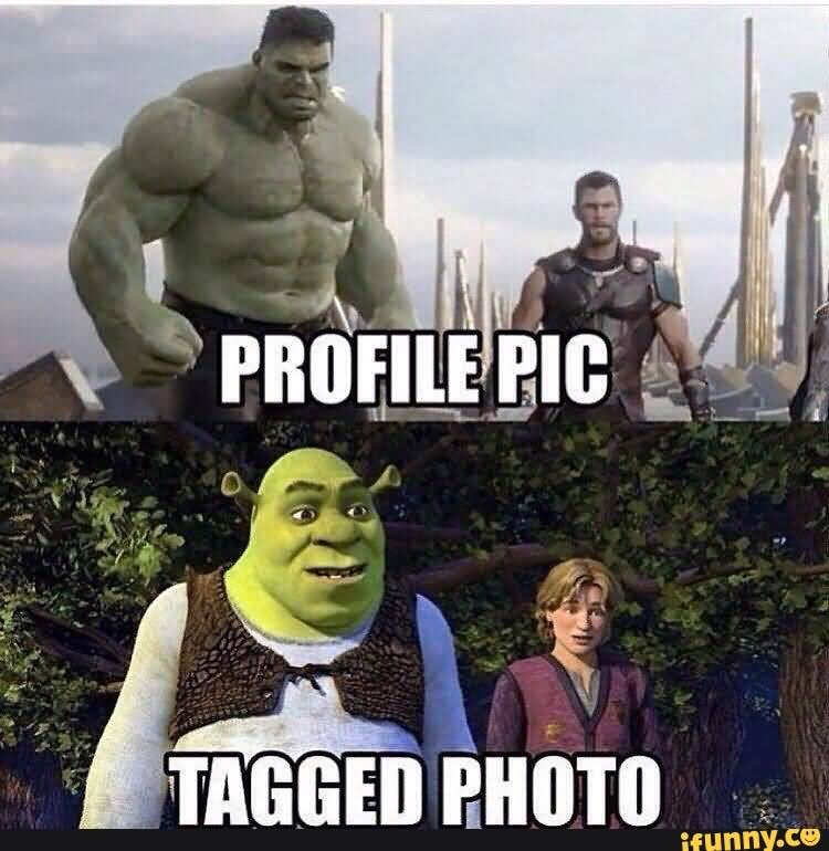 Profile Pic Tagged Photo Hulk Meme